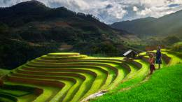 Vietnam's northwest region: A wild and charming retreat for adventure tourists