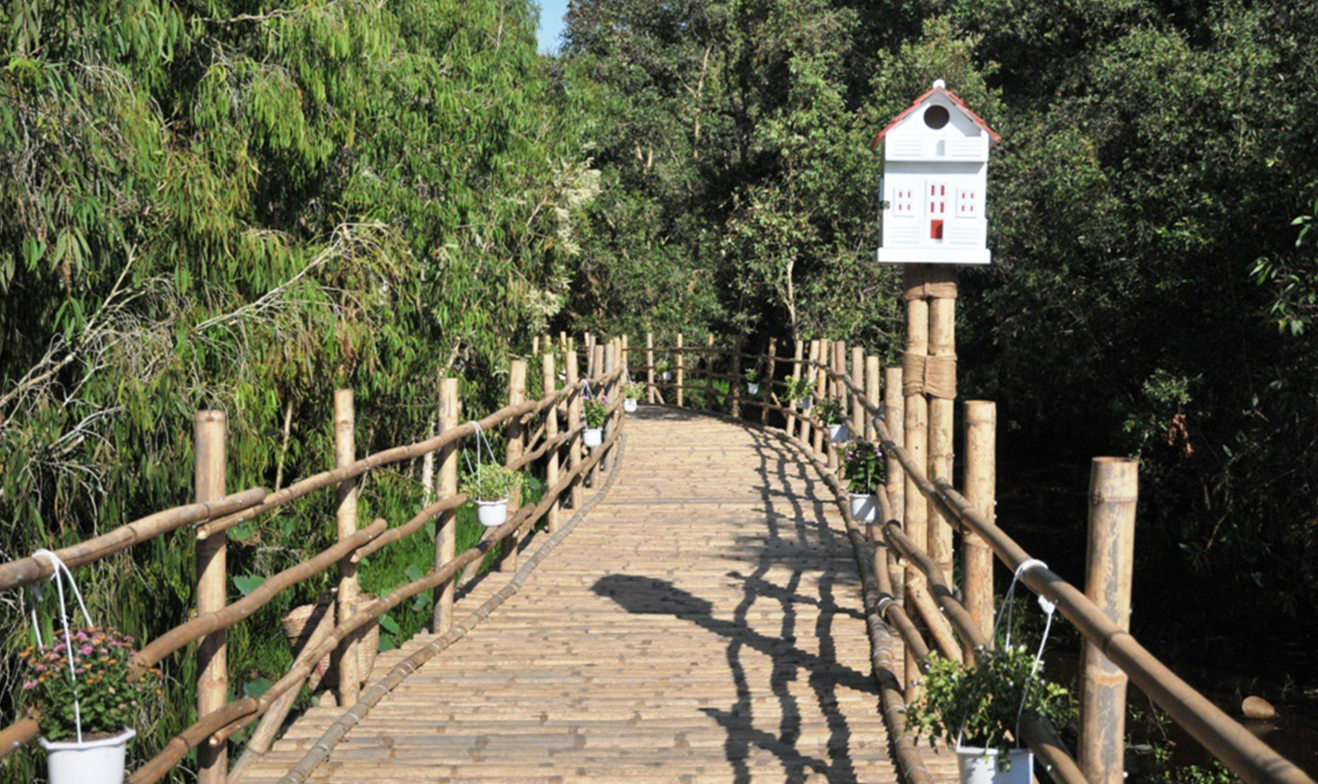 Tra Su bamboo bridge is made by bamboo