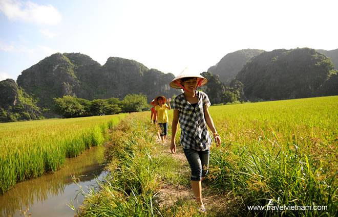 Ninh-Binh-top- attraction