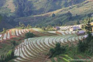 Ha Giang: Terrace fields in water-pouring season