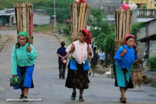 Local women carrying wood on her back