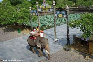 Riding elephants to visit Hue Imperial City