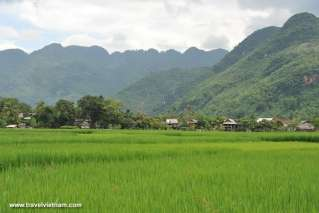 Peaceful Mai Chau villages on the rice fields side
