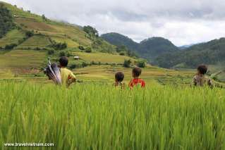 People and nature in Mu Cang Chai
