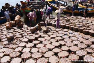 Fishing market in Mui Ne