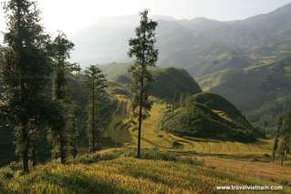 Natural beauty in Sapa