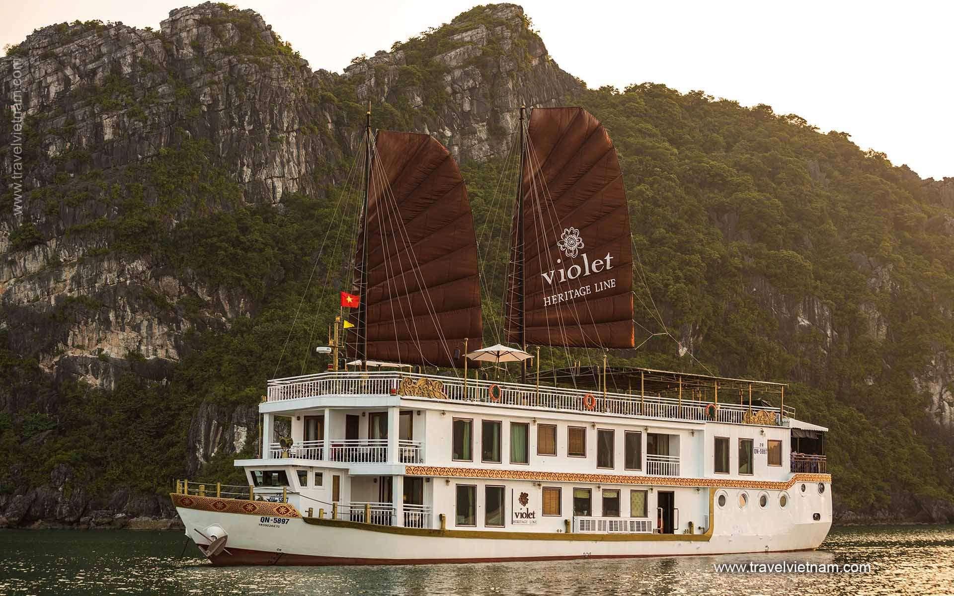 Heritage Line Violet