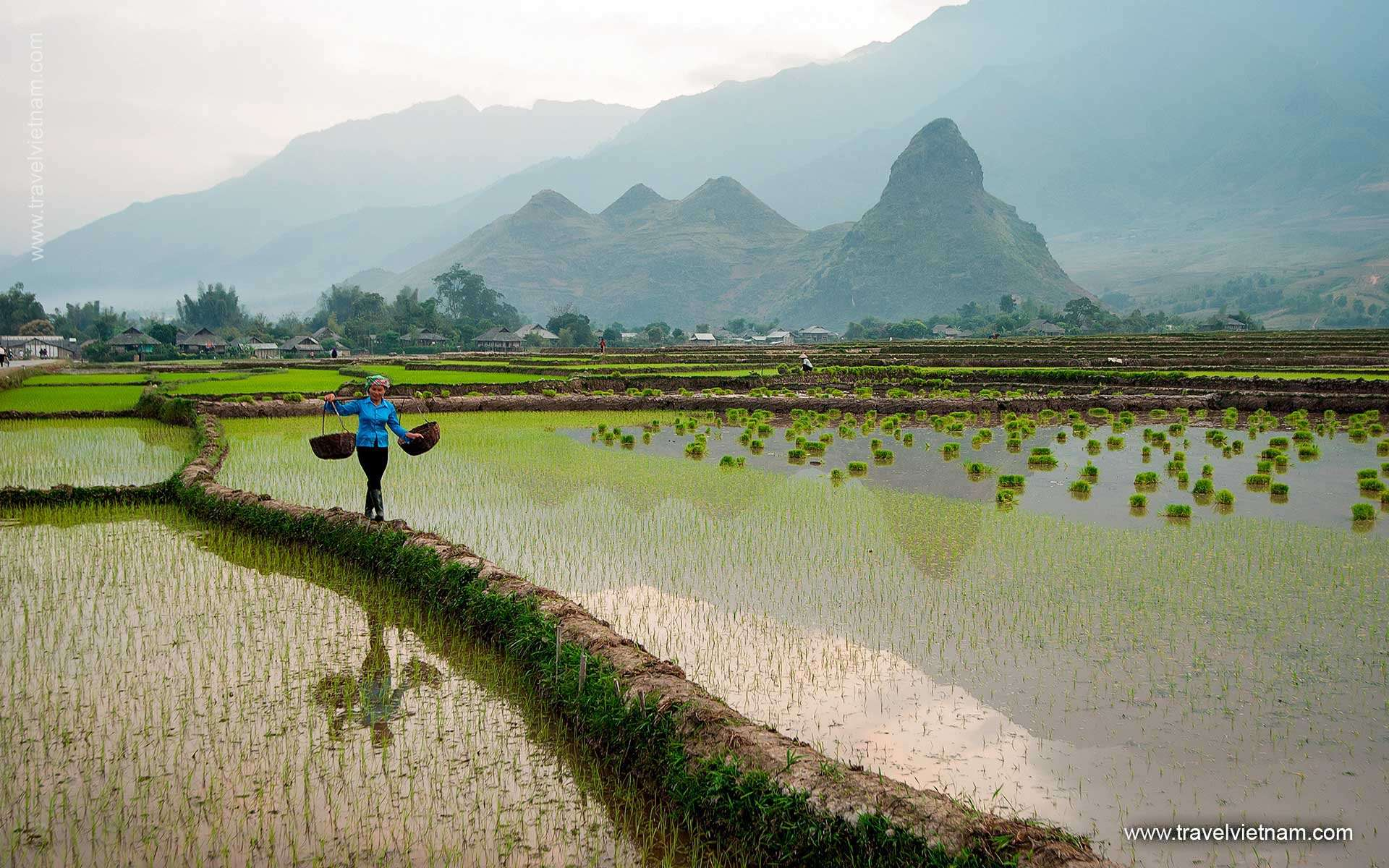 Myths & Mountains of North Vietnam - 6 Days