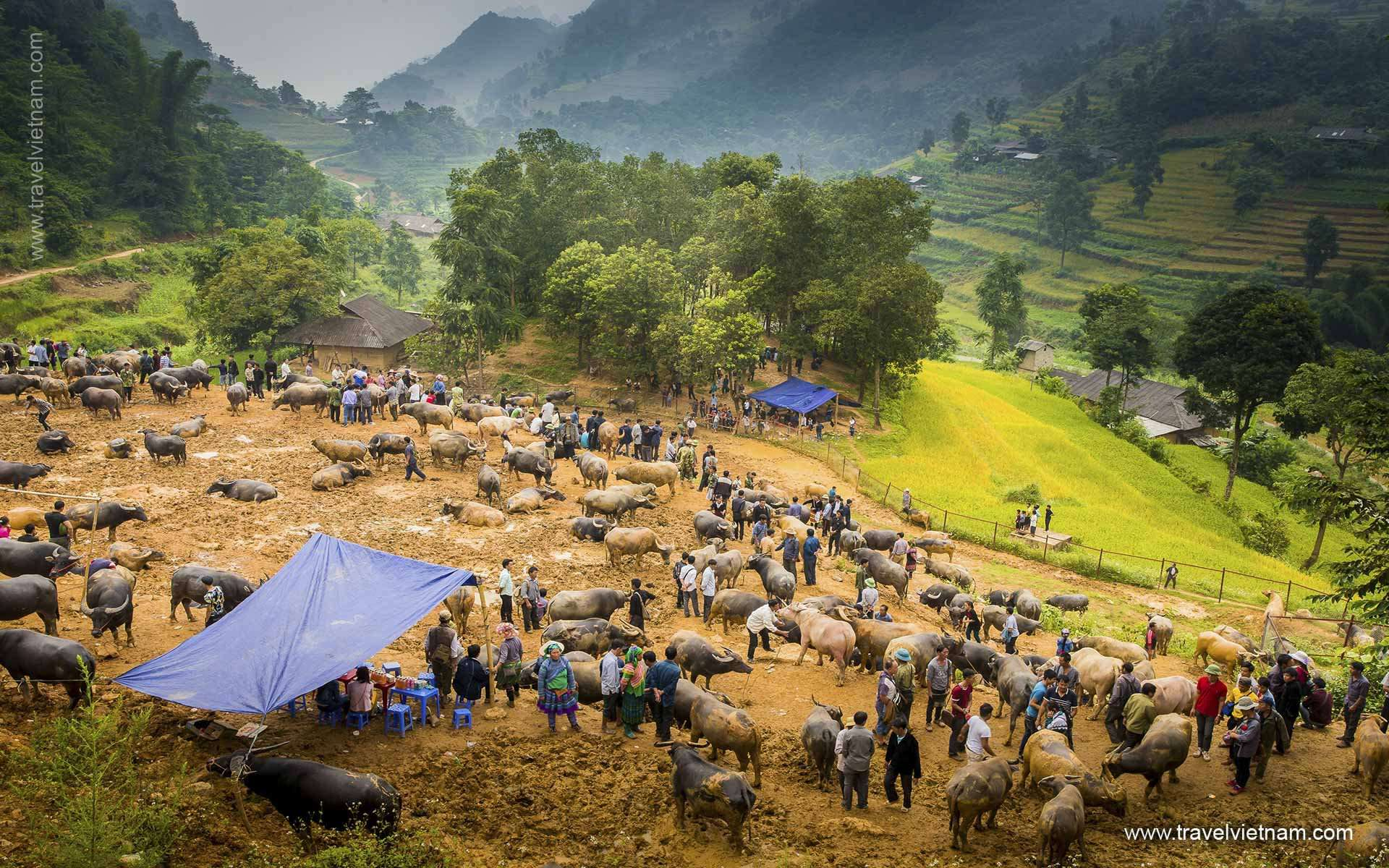 North Vietnam for Adventure - 11 Days