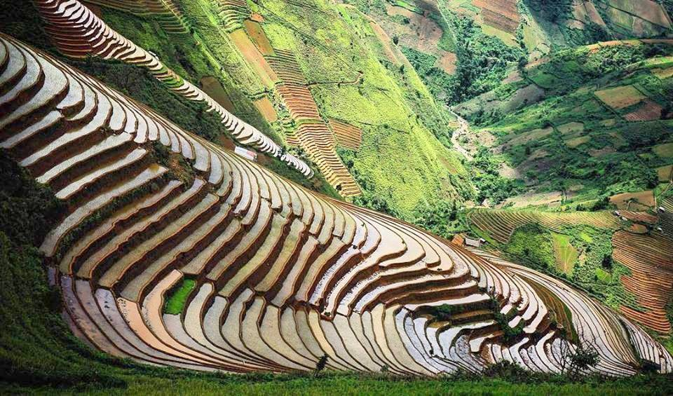 Admiring picturesque rice terraces in Mu Cang Chai